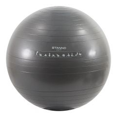 Stanno Stanno Exercise Ball