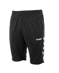 hummel Authentic Training Shorts
